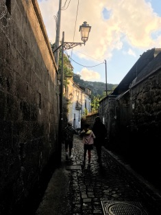 The charming lane from our Sorrento house to the town.