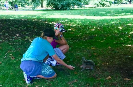 Feeding cute squirrel in Hyde Park